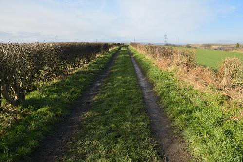 shafton southyorkshire yorkshire ganderhill lidgatelane