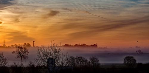 sunrise mist misty haze bird sky clouds village leicestershire rural uk eos canon 6d