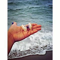 :shell: As sereias cantam seus segredos em conchas, todos ouvem, mas só os crédulos podem entender. :shell: