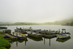 A misty start to a days trout fishing at Stenhouse Fishery...
