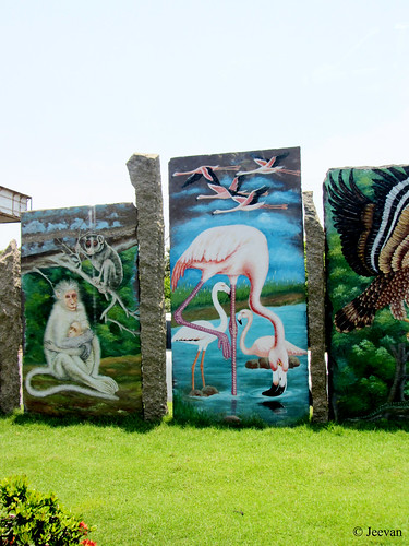 Roadside painting on Birds and Animals