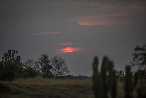 africa park sunset national drc 2014 kivu virunga