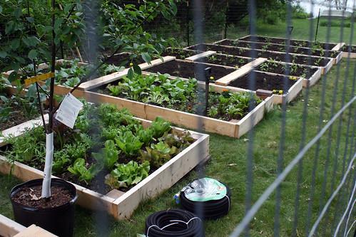 new garden 8045