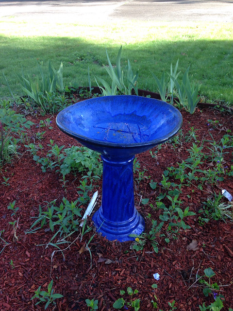 New bird bath