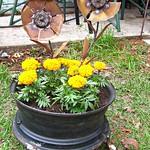 Planter-Rim legs_Pinterest