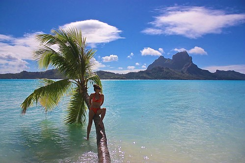 floating tree Bora Bora photo shoot