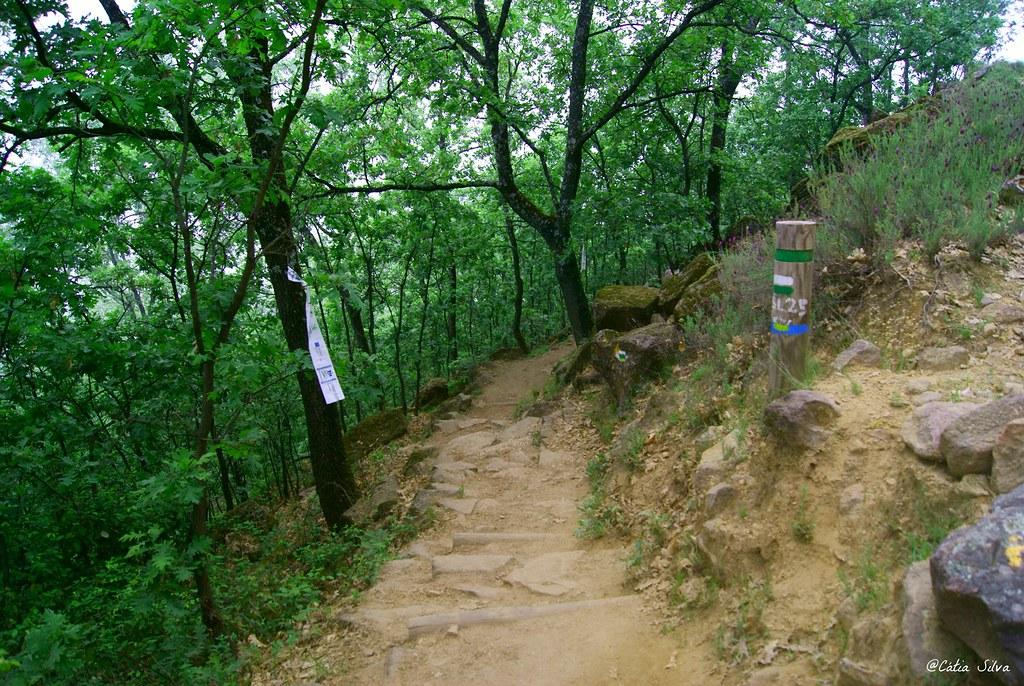 Reserva Natural de la Garganta de los Infiernos_Valle del  Jerte (3)