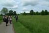 Wimpole Gardens