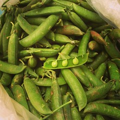 Peas, for the risotto tonight. #seasonal. #chefs