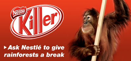 www.greenpeace.org.raw.content.international.assets.banners.kitkat430