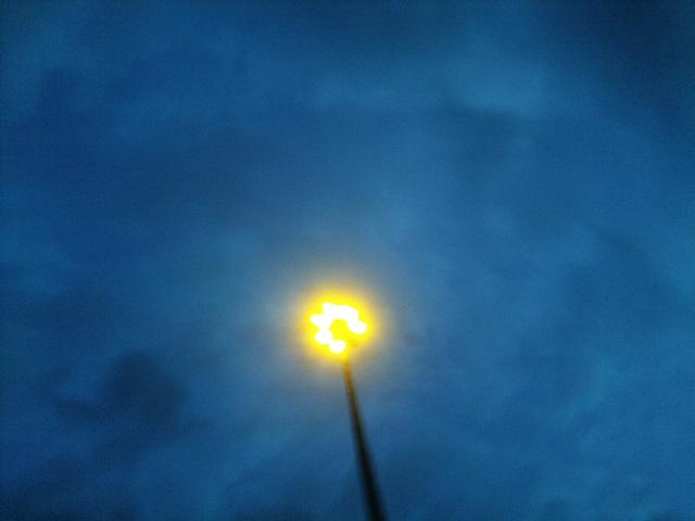 PIC_1510