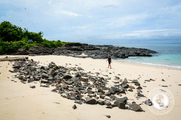 Isla Iguana Pedasi