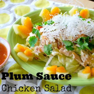 Plum Sauce Chicken Recipe by The Silly Pearl