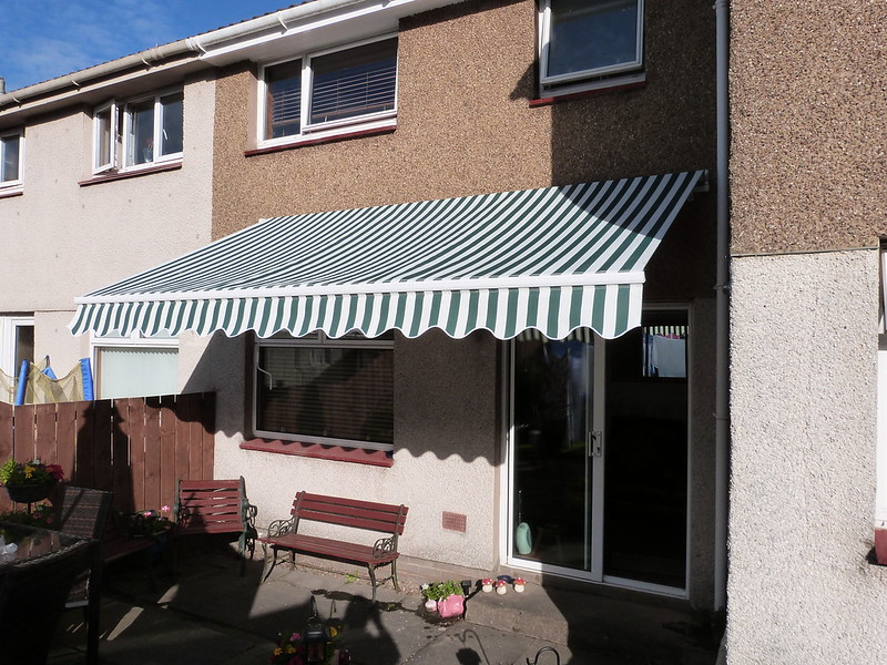 My new canopy 14534749484_215457662a_c