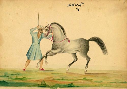 004- Tratando a un caballo histerico- Walters manuscrito W.661- fol 93 a.-The Art Walters Museum