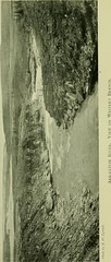 """Image from page 92 of """"Sport and travel in the northland of Canada"""" (1904)"""
