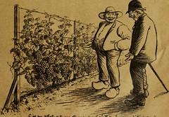 """Image from page 1248 of """"Revue de viticulture : organe de l'agriculture des régions viticoles"""" (1893)"""