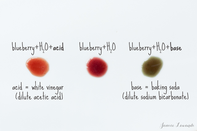 Effect of pH on blueberry color | Jance Lawandi @ kitchen heals soul