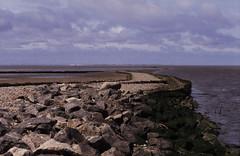 022DK Wattküste