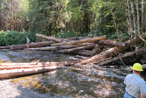 Forest Service employees Don Martin and John Lane inspect an in-stream restoration structure on 12-mile Creek, Prince of Wales Island, Alaska. The Forest Service takes an active role to protect salmon habitat for not just recreational purposes but also for the survival of the species. (U.S. Forest Service file photo/Ron Medel)