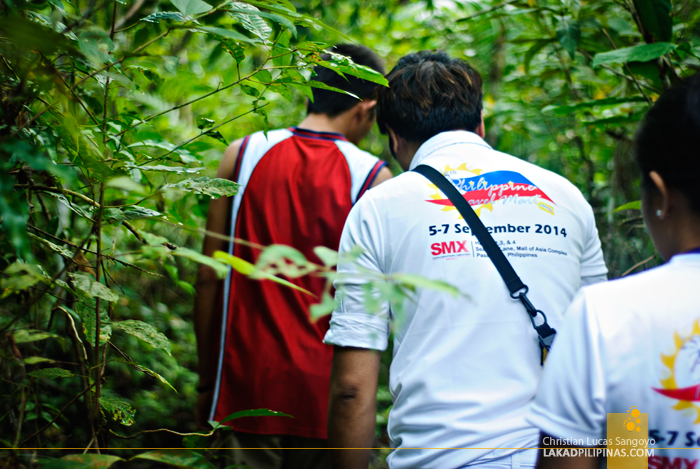Inside the Trail of the Philippine Tarsier & Wildlife Sanctuary in Bohol