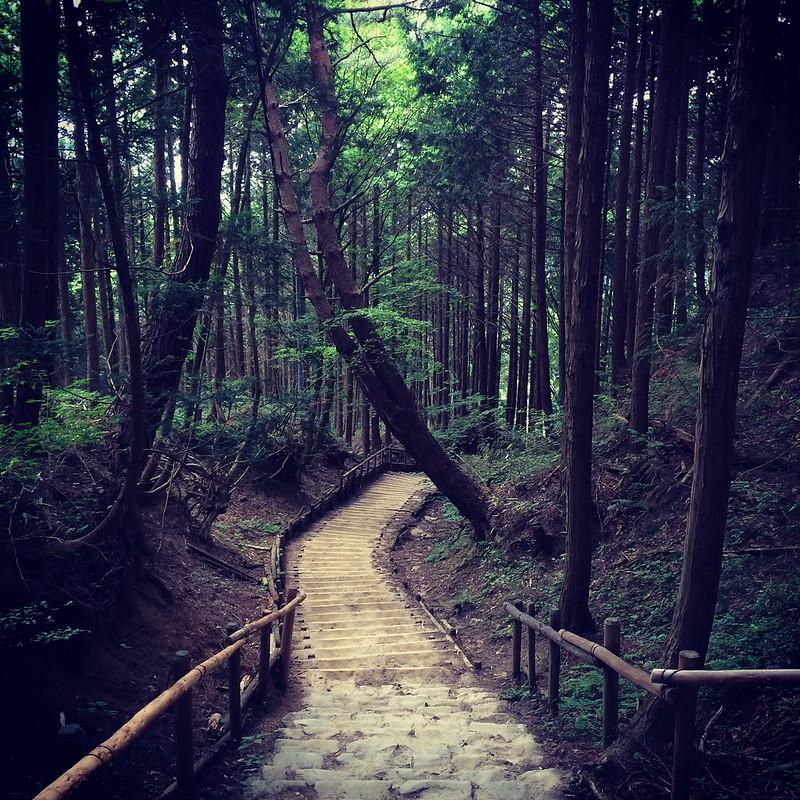Good times in Japan! July 2014 #nara #minoh #kongosan #koto #shabushabu #osaka #japan