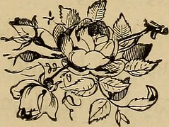 """Image from page 240 of """"Around the tea-table"""" (1874)"""