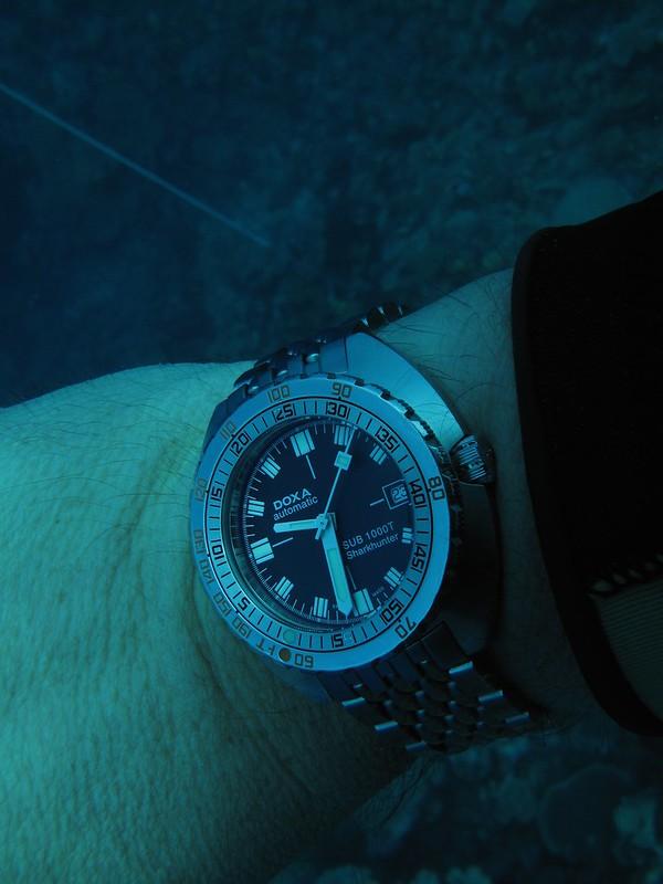 """La """"fonction"""" des montres de plongée 14807029626_758359294c_c"""