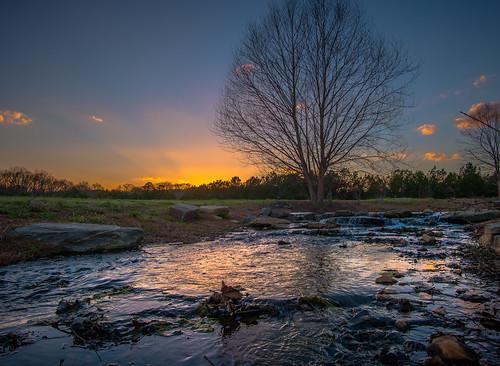 nx500 samsungnx500 rokinon12mmf2 sunrise sunset tree