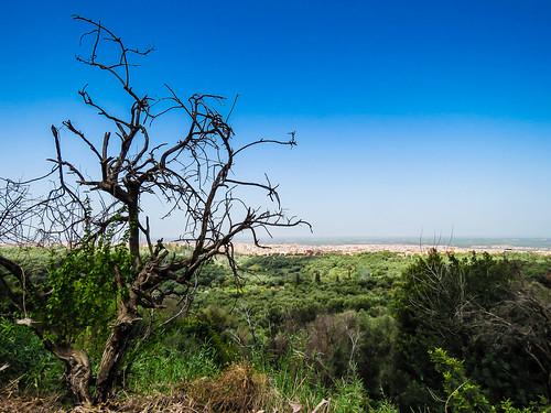 benimellal marokko landscape puisto city maisema kaupunki scenery park jardindeainasserdoun tadlaazilal morocco ma