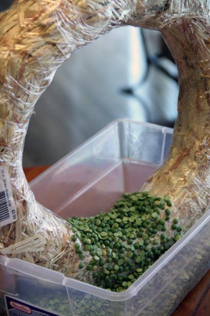 Peas-on-bottom