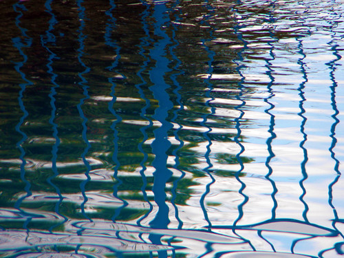 Reflections in a Costa Rican Swimming Pool