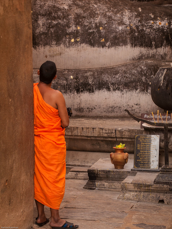 A Monk's Contemplation