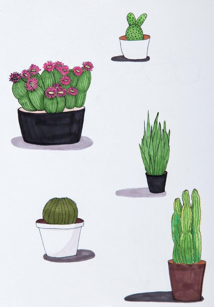 """Plants"""