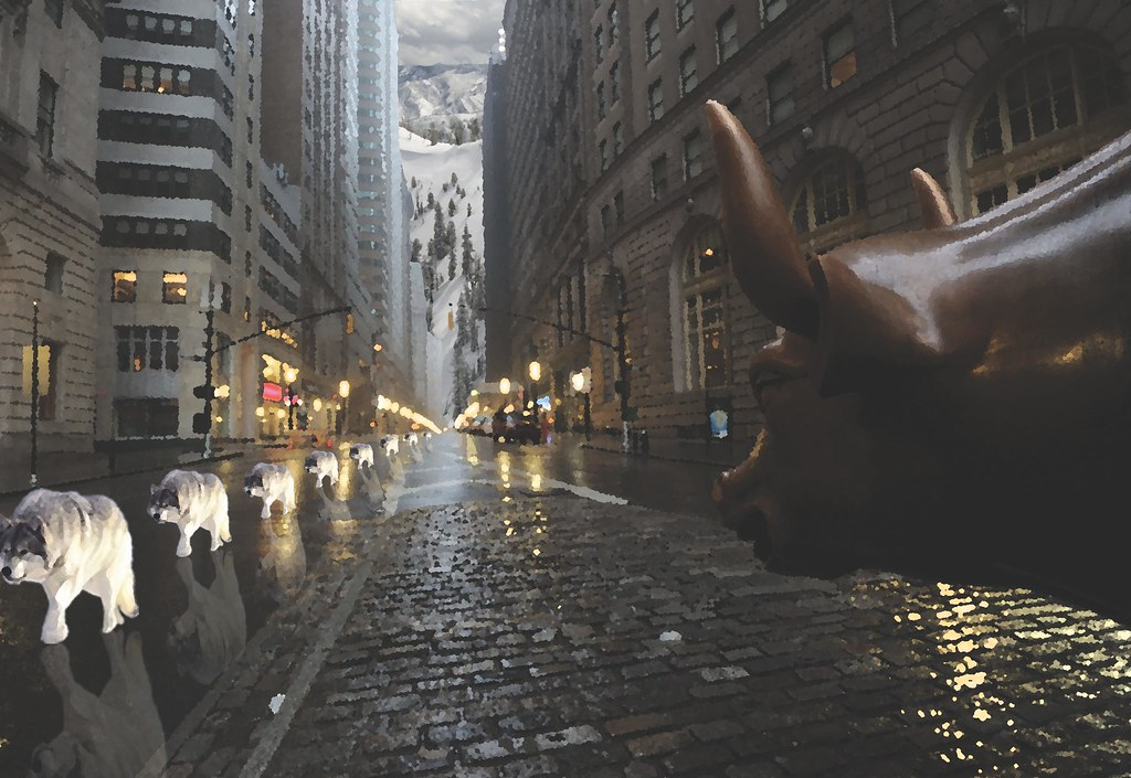2014_5_wolf_on_wallstreet_project