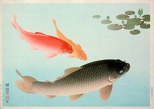 002-Carpa dorada y comum-Ohara Koson-via Lacma