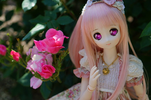 Mafuyu in Rose Garden