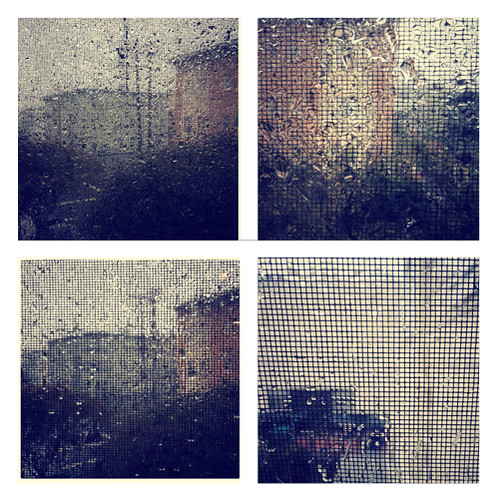 Through the Rain Instagram Series