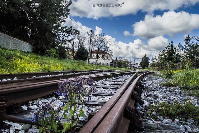 ferrovia calabria - photo#22