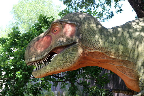 Dinosaurs 11