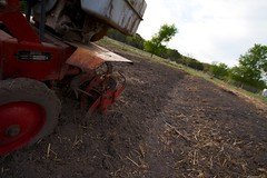 field, soil, vehicle, plough, agricultural machinery,