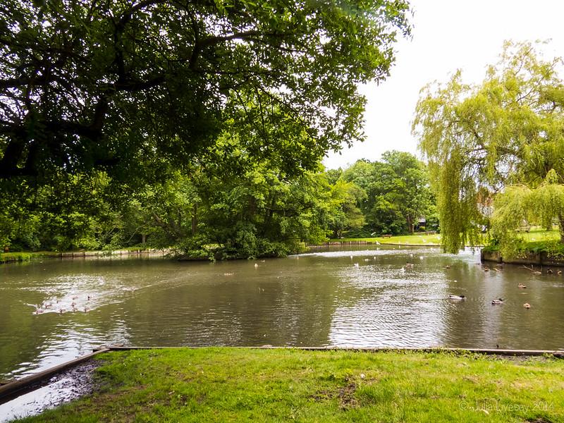 Duck Pond, New Milton