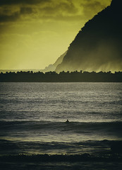 the lone surfer