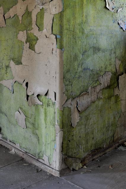 Beelitz_Heilstätten_2014_48