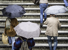 People with Umbrellas on Stairs