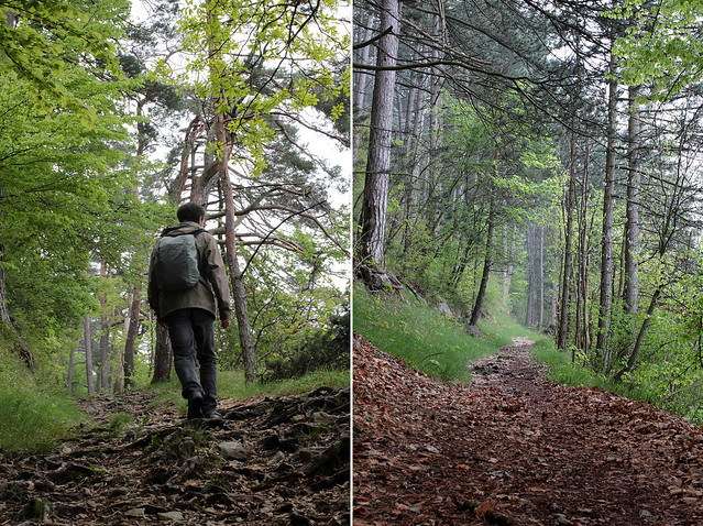 Hiking Annecy-Sévrier