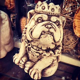 Because everyone needs a king bulldog lawn ornament, right? As seen as TJ Maxx... #bulldog #lawnornament #dogs #dogstagram #funny