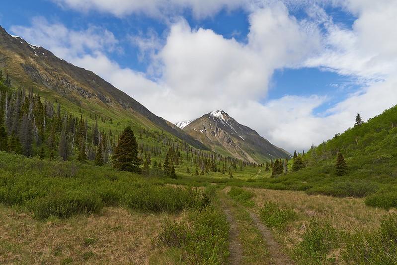 Hiking trail to St. Elias Lake - Kluane National Park
