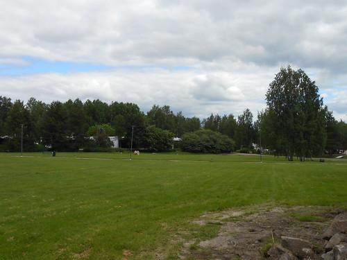 Nurminäkymä, Pohjois-Tapiola Espoo 19.6.2014
