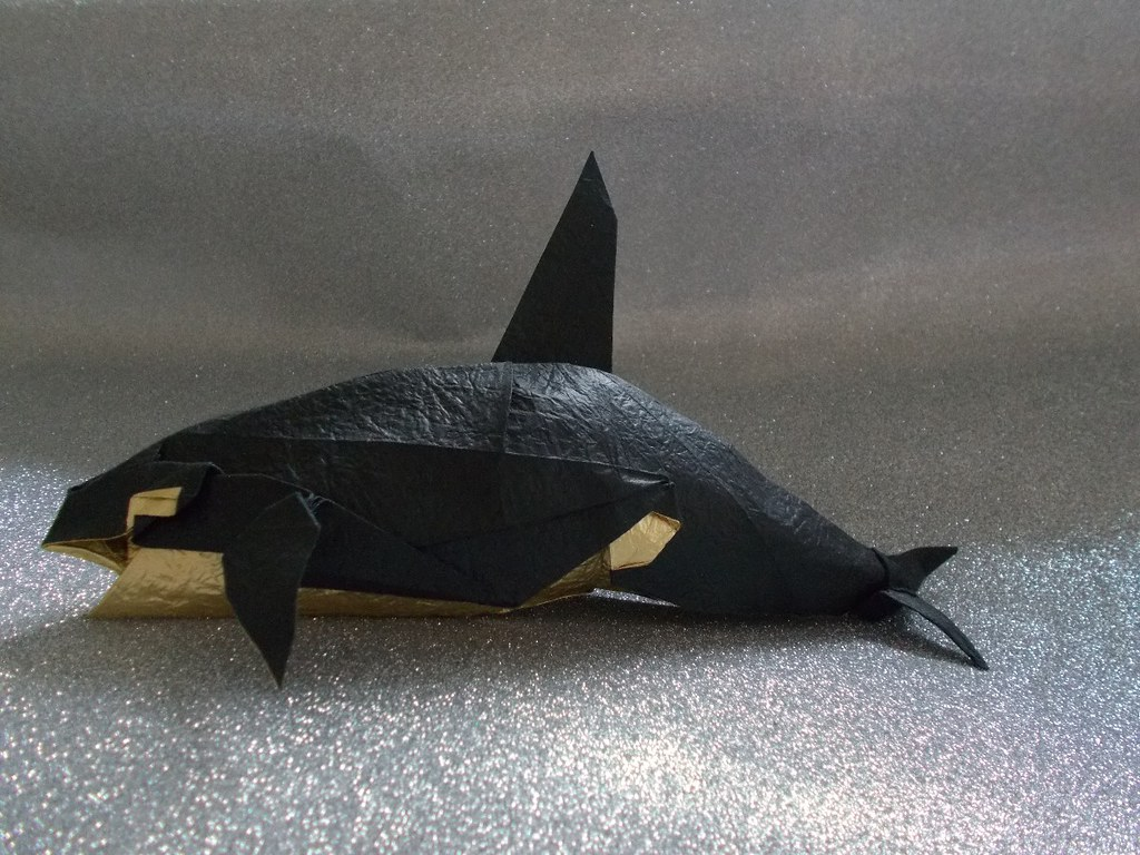 Killer Whales | Designed by Akihiro Kosuge. I folded these w… | Flickr | 768x1024